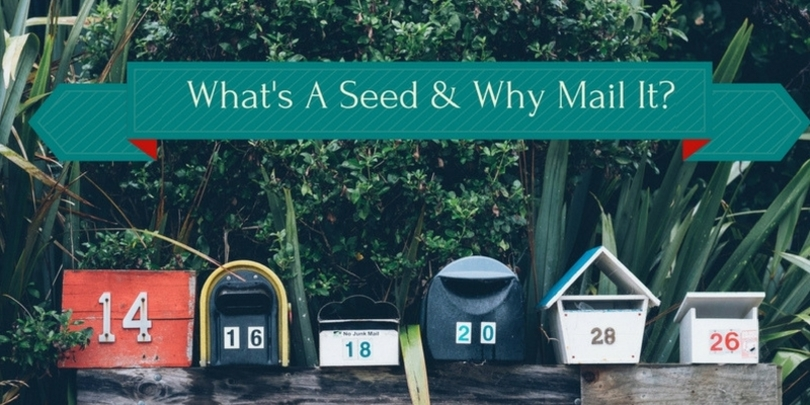 Why we seed our postcard mailings